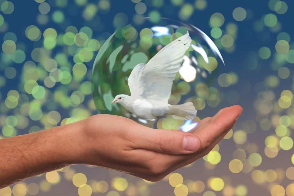 Fredsdue i hånd, symboliserer fred eget liv.